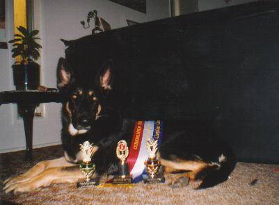 Prince with his CD Trophies (1994)